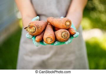 imagem, mulher, cenoura, segurando