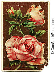 imagen, artista, -, rosas, ivano, shved