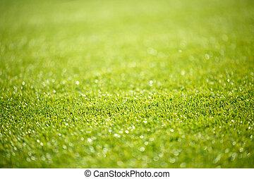imagen, fútbol, verde, sobre, campo