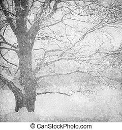 imagen, grunge, paisaje de invierno