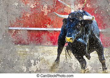 imagen, plano de fondo, textura, bullfight, artístico