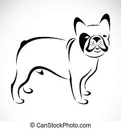 imagen, vector, (bulldog), perro