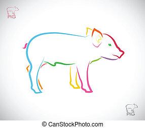 imagen, vector, cerdo