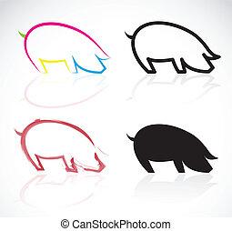 imagen, vector, cerdos