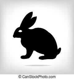 imagen,  vector, conejo
