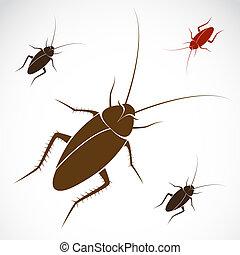 imagen, vector, cucaracha