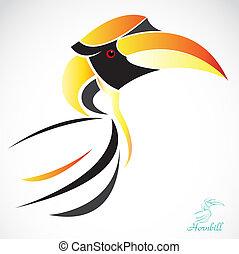 imagen, vector, hornbill