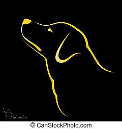 imagen, vector, labrador, perro