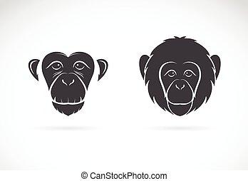 imagen, vector, mono, cara