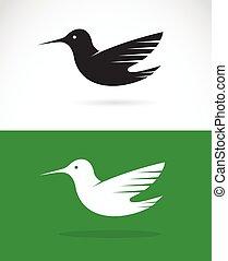 imagen,  vector, verde, Plano de fondo, diseño, blanco, Colibrí