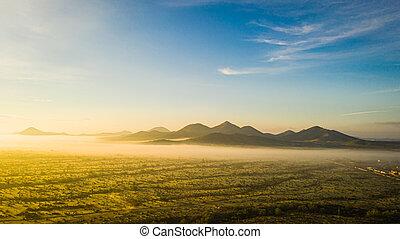 imagen, zángano, niebla, sonoran, arizona, desierto