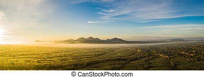 imagen, zángano, panorama, niebla, sonoran, arizona, ...