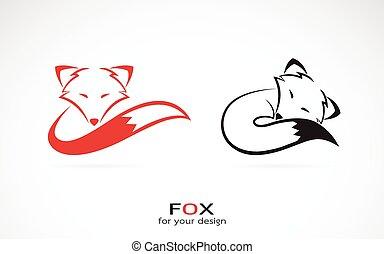 imagen, zorro, vector, diseño, plano de fondo, blanco
