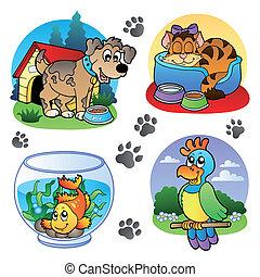 imagens, 1, vário, animais estimação