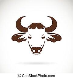 imagens, head., vetorial, bisonte