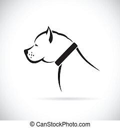imagens, vetorial, cão, pitbull