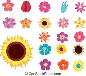 images, fleurs, agrafe