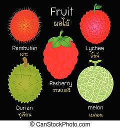 images, fruits., divers
