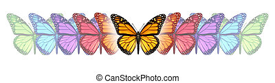 Imagination Freedom - Imagination freedom with a monarch...