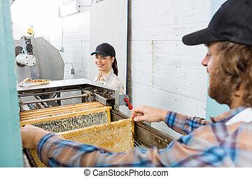 imker, mit, kollege, arbeitende , in, beekeeping, fabrik