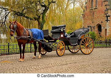 A beautiful brown horse hitched to a four wheel horse carriage in immaculate condition. In the background is a body of water and a red brick house. Brugge, Belgium.