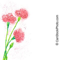 immagine, chiodo di garofano, illustrazione, acquarello, flowers., vettore