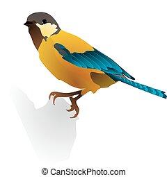 immagine, di, uno, bello, uccello