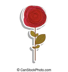 immagine, fiore, delicato, disegno, icona