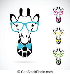 immagine, fondo., giraffa, vettore, bianco, occhiali