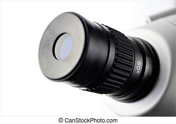 immagine, microscopio