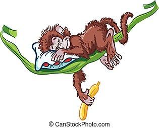 immagine, vine., scimmia, in pausa