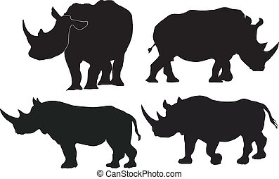 immagini, vettore, collezione, rinoceronte
