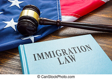 Immigration law, wooden gavel and American flag.