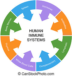 Immune System Word Circle Concept with great terms such as...