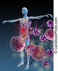 Immunity Against Diseases - Protected individual repelling...