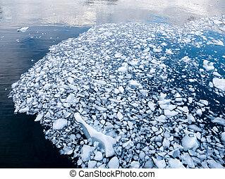 impetuoso, drifting, baía, gelo, gelo, água, antártica, derretendo, bocados, andvord
