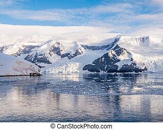 impetuoso, porto, baía, enseada, gelo, lester, arctowski, antártica, geleiras, neko, flutuante, andvord, península