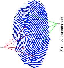 impresión, dedo