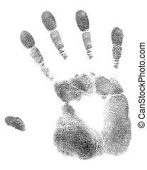 impresión, palma, mano