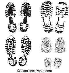 impresión, pie, zapato, niño