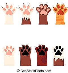 impressão, garras, gato, cão, pata
