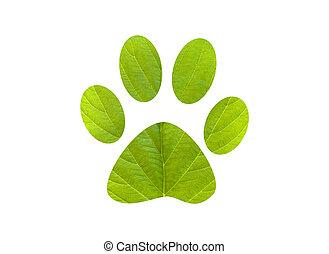 impressão pé, cachorro verde