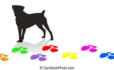 impressões, silueta, cão, coloridos, pata