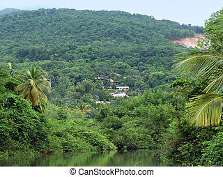 idyllic jungle scenery with small settlement at a caribbean island named Guadeloupe