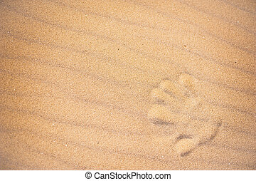 impression, plage sable, main