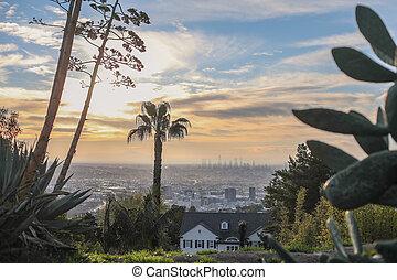 impressionante, panorâmico, manhã, vista, de, los angeles baixa, e, hollywood, tiro, de, runyon, desfiladeiro, hollywood, colinas, califórnia