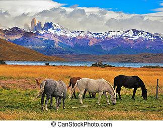 Impressive landscape in Chile - Lake Laguna Azul in the...