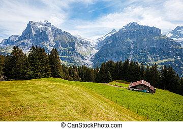 Impressive view of alpine Eiger village. Location place Swiss alps, Grindelwald valley, Europe.