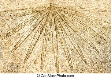 Imprint of leaf on the concrete floor background