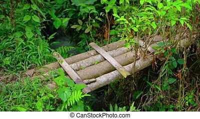 Improvised bridge of split bamboo spans a narrow irrigation canal on a traditional rice plantation in Ubud, Bali, Indonesia, with sound.